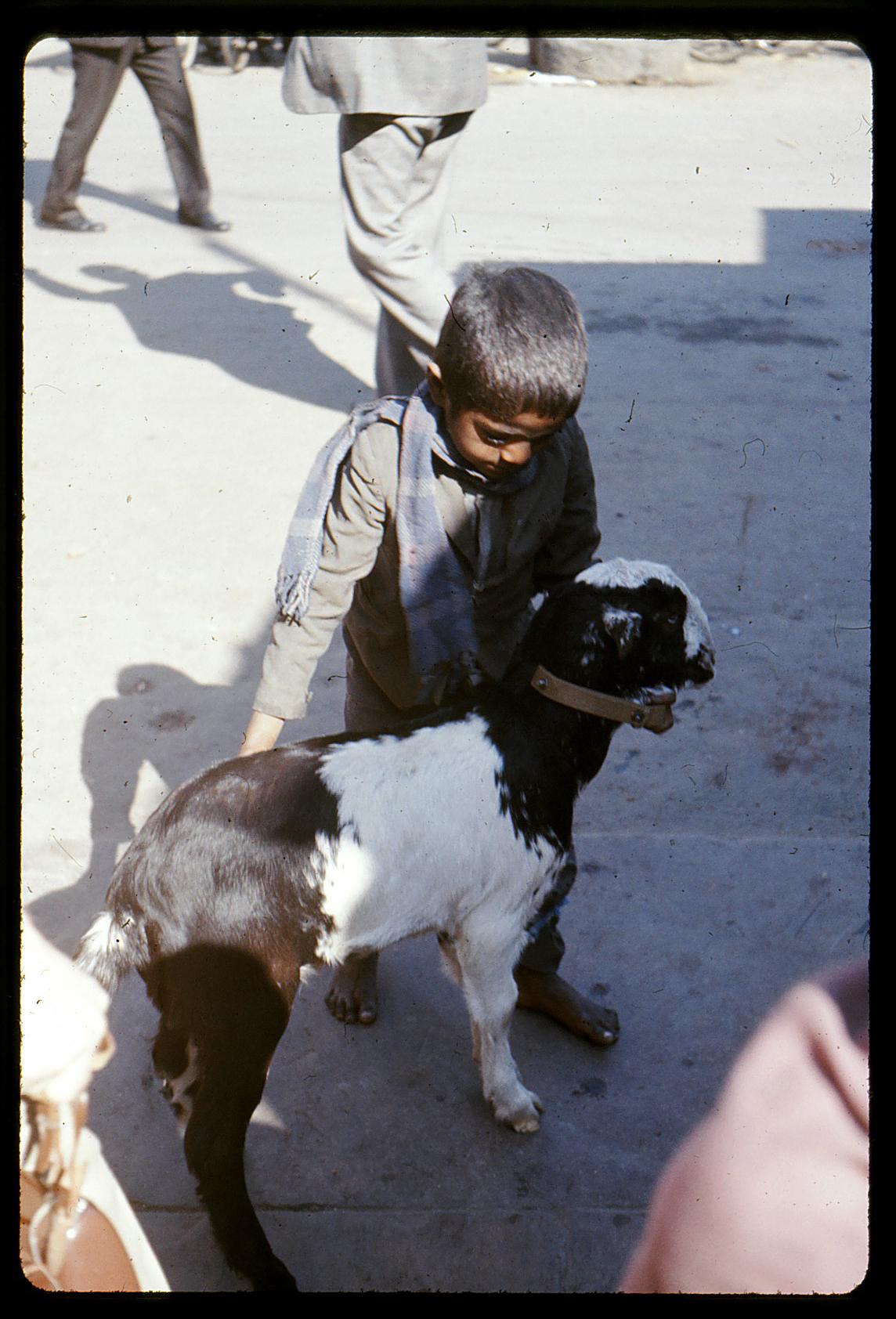 india1975-3
