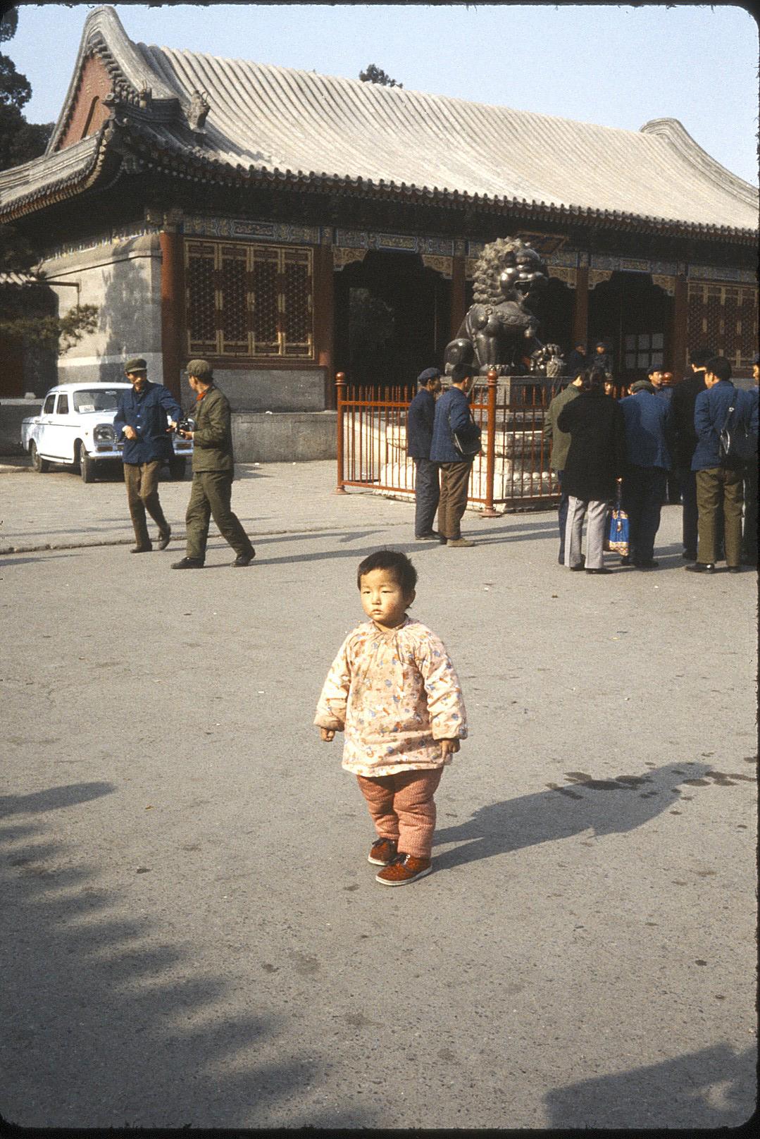 china1981-1